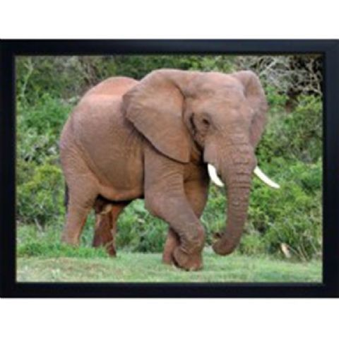 ELEPHANT 3D FRIDGE MAGNET